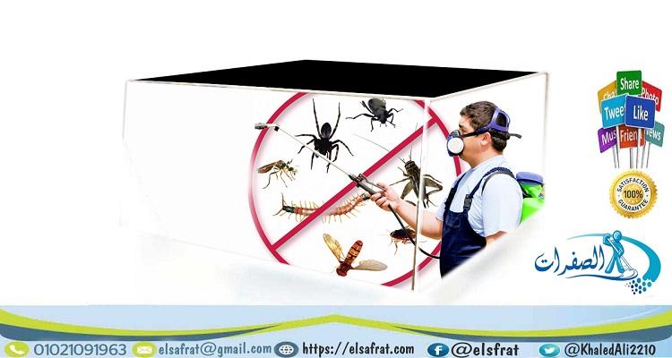 شركة الصفرات لابادة الحشرات